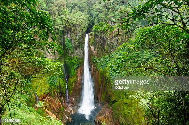 tropical waterfall in volcanic crater - ogphoto stock pictures, royalty-free photos & images