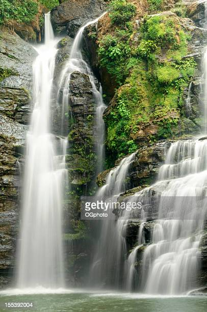tropical waterfall - ogphoto stock photos and pictures