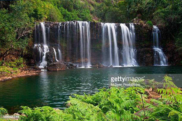 tropical waterfall - water fall hawaii stock pictures, royalty-free photos & images