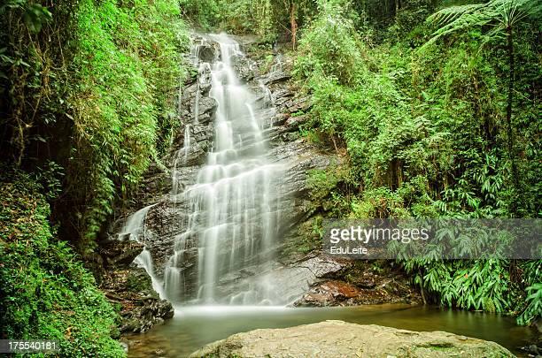 tropische wasserfall - mata atlantica stock-fotos und bilder