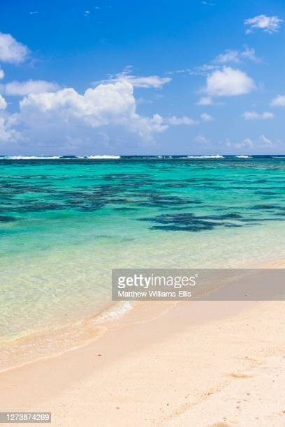 tropical white sandy beach, perfect clear blue turquoise water and clear blue sky on a paradise island in the pacific ocean in muri area of rarotonga, cook islands, background with copy space - islands in the sky stock pictures, royalty-free photos & images