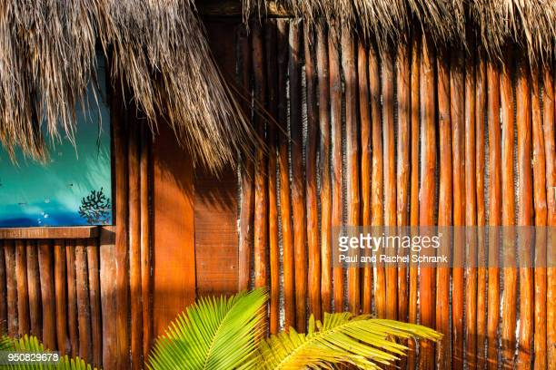 Tropical wood background with palm leaves and palapa