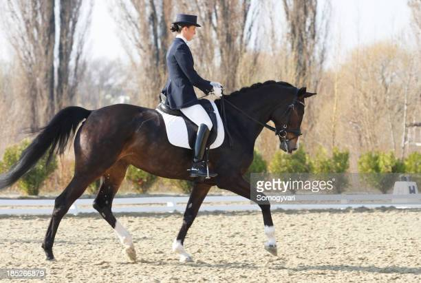 Trot on a dressage competition