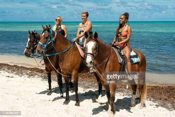 "Trouble in Paradise"" Episode 416 -- Pictured: Karen Huger, Robyn Dixon, Candiace Dillard Bassett --"