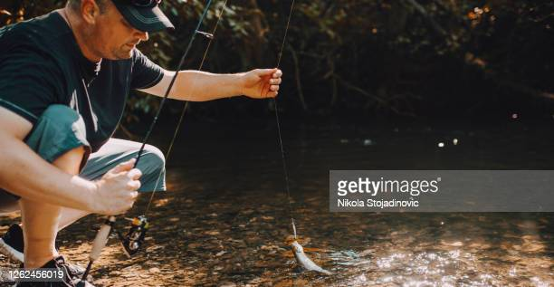 troutfishing - brown trout stock pictures, royalty-free photos & images