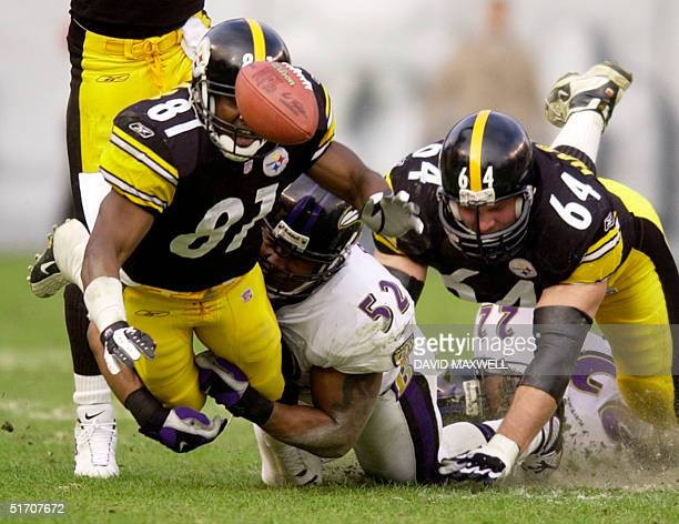 Troy Edwards of the Pittsburgh Steelers fumbles the ball as he is tackled by Ray Lewis of the Baltimore Ravens in second quarter during AFC...