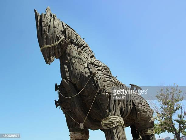 troy cavallo di - cavallo di troia foto e immagini stock