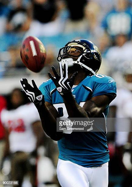Troy Williamson of the Jacksonville Jaguars catches a touchdown pass during the first quarter against the Tampa Bay Buccaneers at Jacksonville...