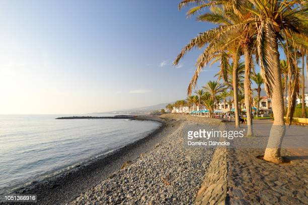 troya beach, in costa adeje town, south of tenerife island (canary islands) - dähncke fotografías e imágenes de stock