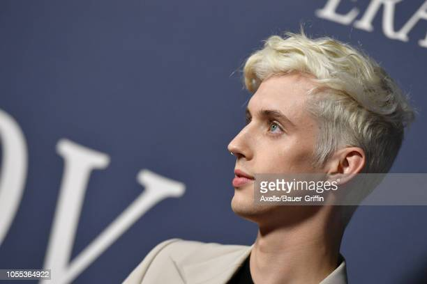 Troye Sivan attends the premiere of Focus Features' 'Boy Erased' at Directors Guild of America on October 29, 2018 in Los Angeles, California.