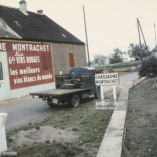 Truck Coming Back From Wine Picking In Burgundy At Chassagne Montrachet In France On 1961