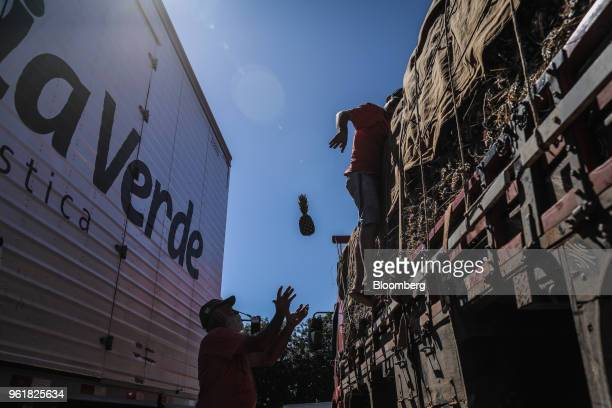 Truck drives pull pineapples from a cargo vehicle while parked on BR 040 highway during a protest against rising fuel prices in Luziania Brazil on...