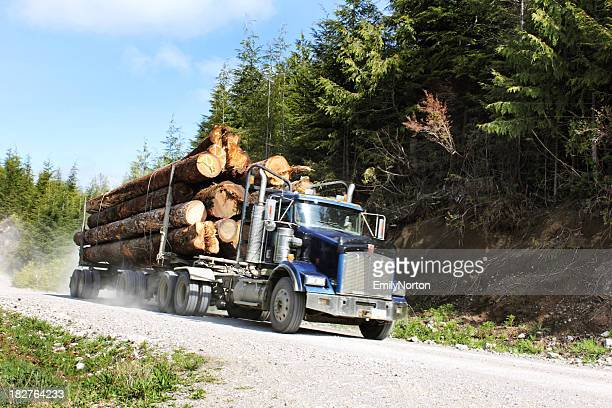 Truck filled with logs going through a dirt road