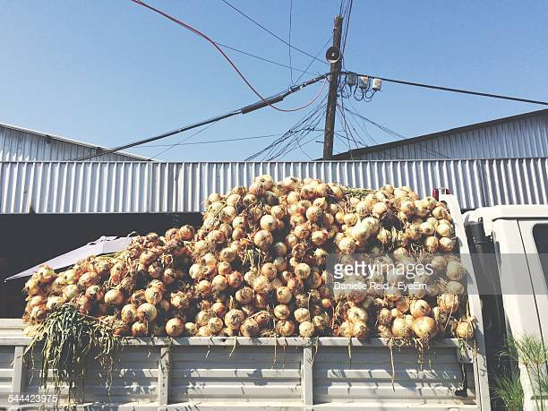 Truck Full Of Onions Outside Warehouse