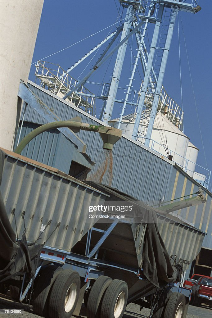 Truck getting wheat from grain silos : Stockfoto