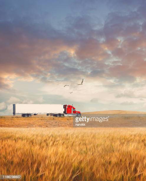 truck going on the road - country road stock pictures, royalty-free photos & images