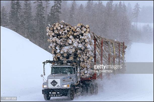 Truck 'Hors Route' Transport Of Wood Saguenay In Quebec Canada In 2000At 70 km / h the 26 tires raise the snow from the runway If there is no wind...