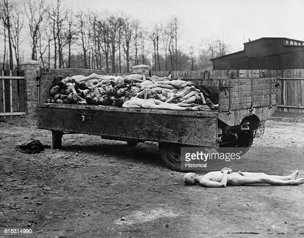 A truck in a concentration camp is piled high with bodies awaiting disposal at the time the camp was overrun