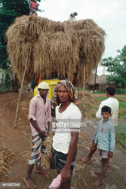 A truck is loaded with dried straw by low caste farm workers November 1 1991 in rural Andhra Pradesh India Caste plays a crucial role in division of...
