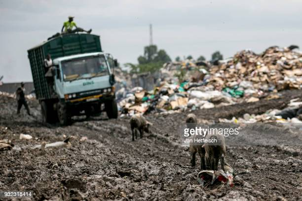 A truck leaves the Dandora rubbish dump on March 14 2018 in Nairobi Kenya The Dandora landfield is located 8 Kilometer east of the city center of...