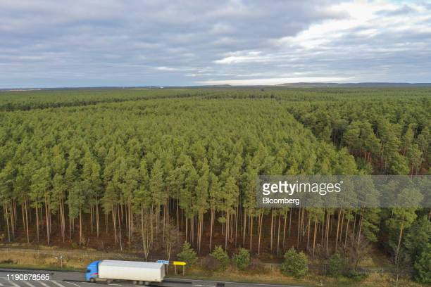 A truck passes along a road in front of a forested area of the proposed location for a Tesla Inc Gigafactory in this aerial photograph taken above...