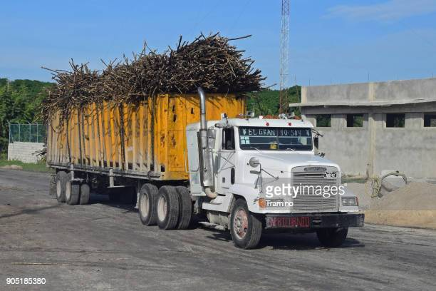 Truck with sugarcane on the road