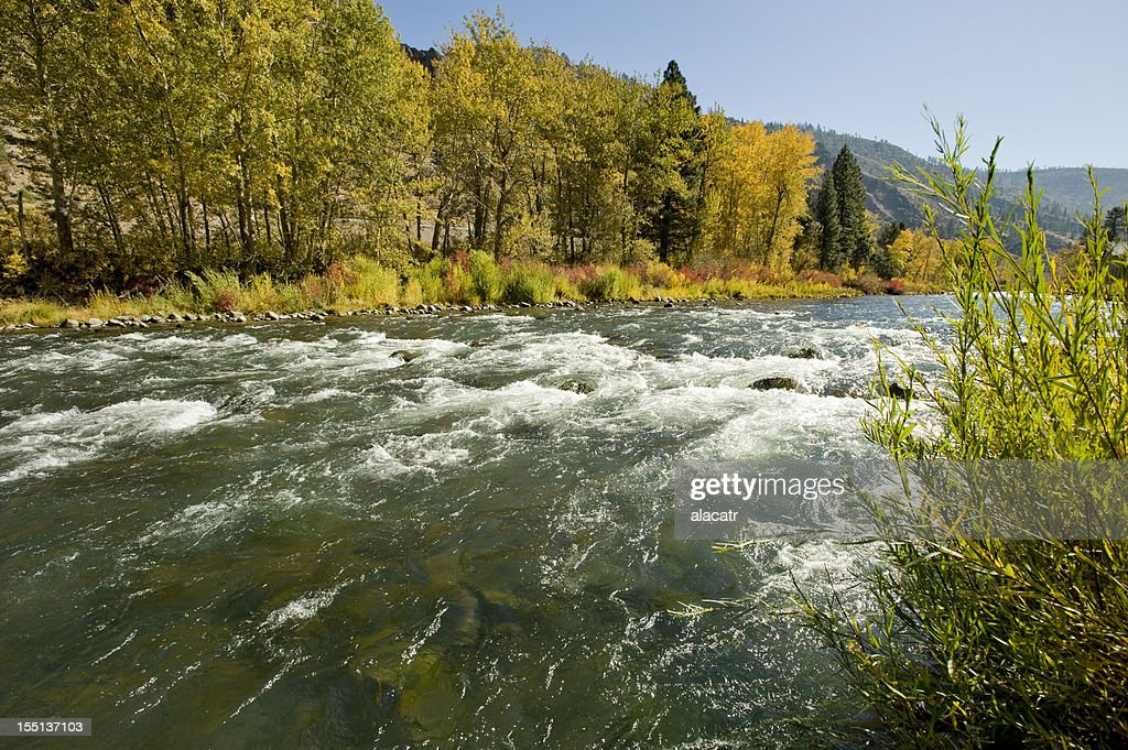 Truckee River, Reno, Autumn : Stock Photo