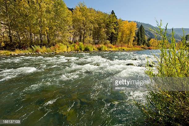 Truckee River, Reno, Autumn