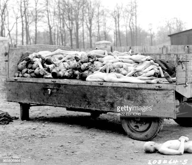 A truckload of bodies in the Buchenwald concentration camp at Weimar Germany The bodies were about to be disposed of by burning when the camp was...