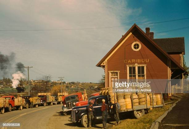 Trucks Carrying Barrels of Potatoes to be Graded and Weighed Lined up in front of Starch Factory Caribou Aroostook County Maine USA Jack Delano for...