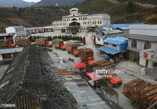 Trucks carrying logs line up for geting pass the custom to enter China on March 14 2006 in Panwa Kachin State Special Region 1 of Kachin State...