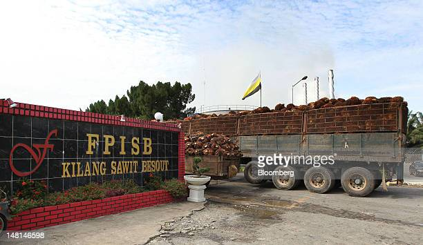 Trucks loaded with oil palm fruit arrive at the Felda Global Ventures Holdings Bhd palm oil plant in Besout Perak Malaysia on Wednesday July 4 2012...