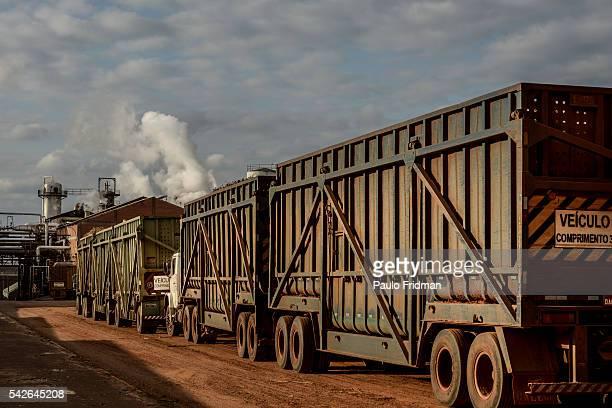 Trucks with Sugarcane plants enter the mill as vapor steams out of the furnaces At Unidade industrial Cruz Alta da Guarani SA ethanol sugar and...