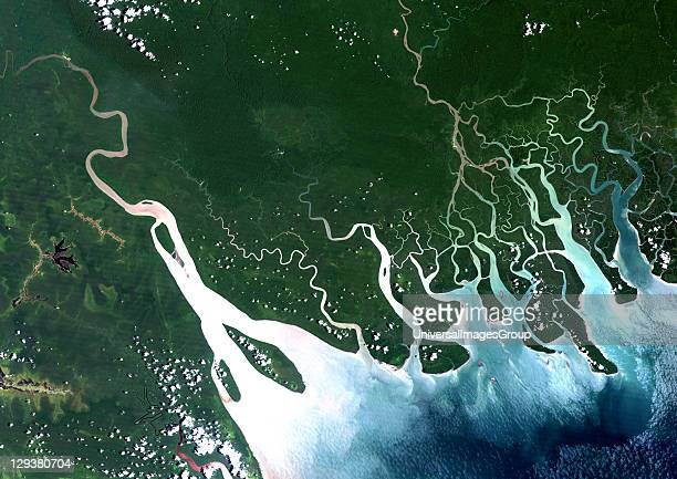 True colour satellite image of the deltas of the rivers Hawooi and Kikori They are the major deltas of the West coast of the Papua Gulf The dark...