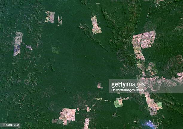 True colour satellite image showing deforestation in Amazonia in the State of Para Brazil Image taken in 1992 using LANDSAT data Deforestation Para...