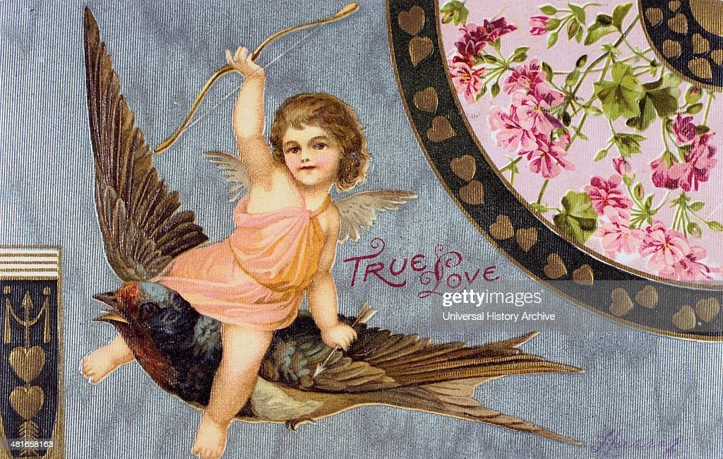 True Love', American Valentine card, 1908. Cupid , his bow held aloft, rides a Swallow, a Bluebird of Happiness. : News Photo