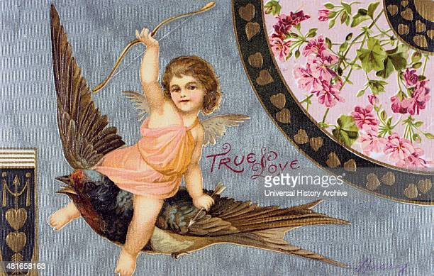 True Love' American Valentine card 1908 Cupid his bow held aloft rides a Swallow a Bluebird of Happiness In Roman mythology Cupid was the son of...