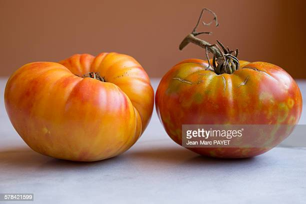 "true organic tomatoes ""beef heart"" - jean marc payet stock pictures, royalty-free photos & images"
