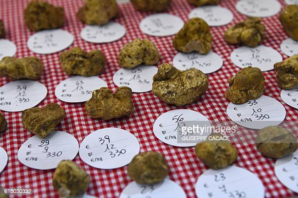 Truffles are presented with their weight and their price at the truffle market of Alba on October 15 2016 / AFP / GIUSEPPE CACACE
