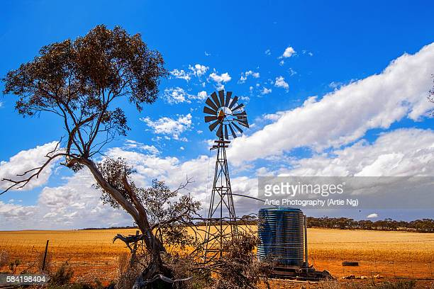 A Truly Australian Scene of a Eucalyptus (Gum) Tree, Scrubs and a Multi-Bladed Wind Powered Water Pump on a Farm Field in Australia