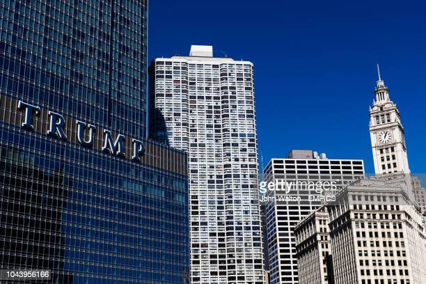 Trump international hotel tower and The Wrigley building Buildings and Landmarks Chicago