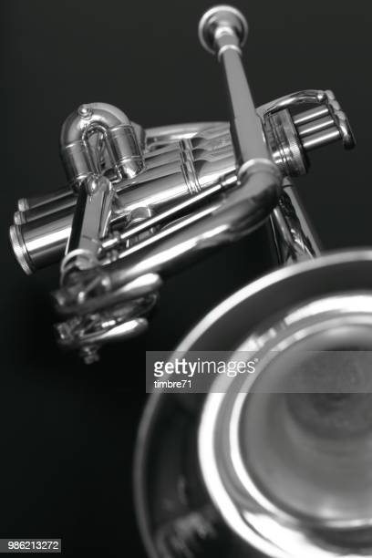 trumpet b&w - brass stock pictures, royalty-free photos & images