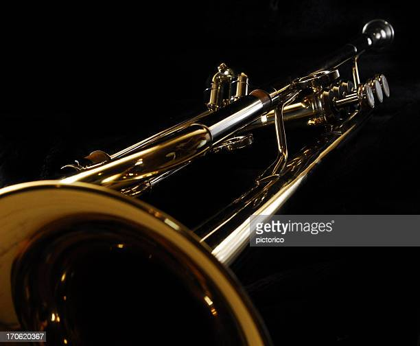 trumpet in perspective