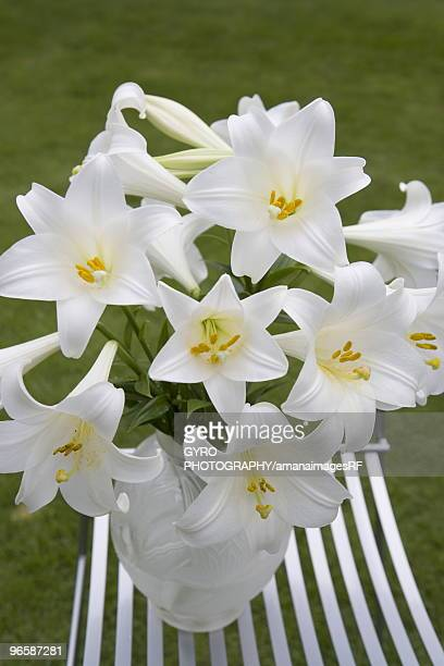 trumpet lilies in a vase - easter lily stock pictures, royalty-free photos & images