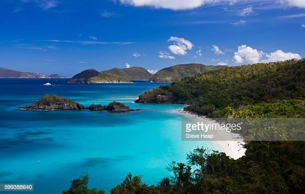 trunk bay on the caribbean island of st john in the us virgin islands, usa - バージン諸島 ストックフォトと画像