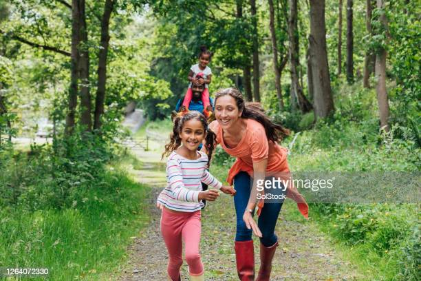 try and catch me mummy! - woodland stock pictures, royalty-free photos & images