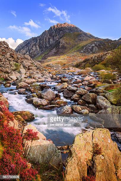 tryfan, llyn ogwen, snowdonia, north wales - snowdonia stock photos and pictures