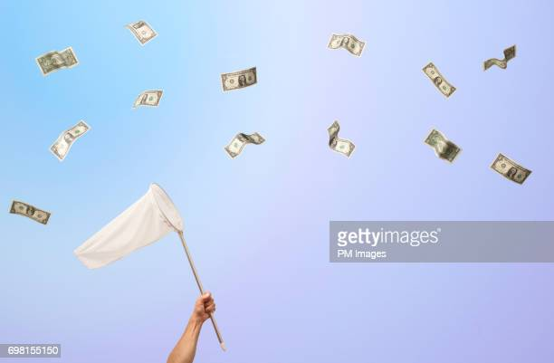 Trying to catch a dollar bills with a net