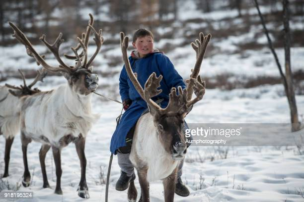 Tsaatan boys riding reindeer, Reindeer People, Mongolia