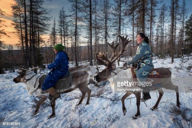 Tsaatan grils riding reindeers, Mongolia